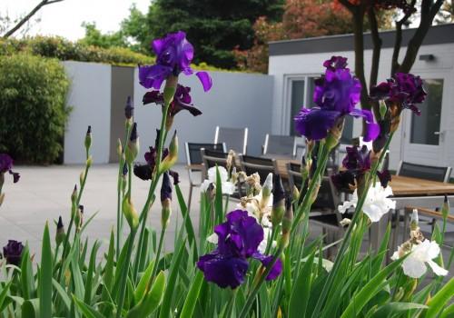Villa tuin met basalt en aluminium