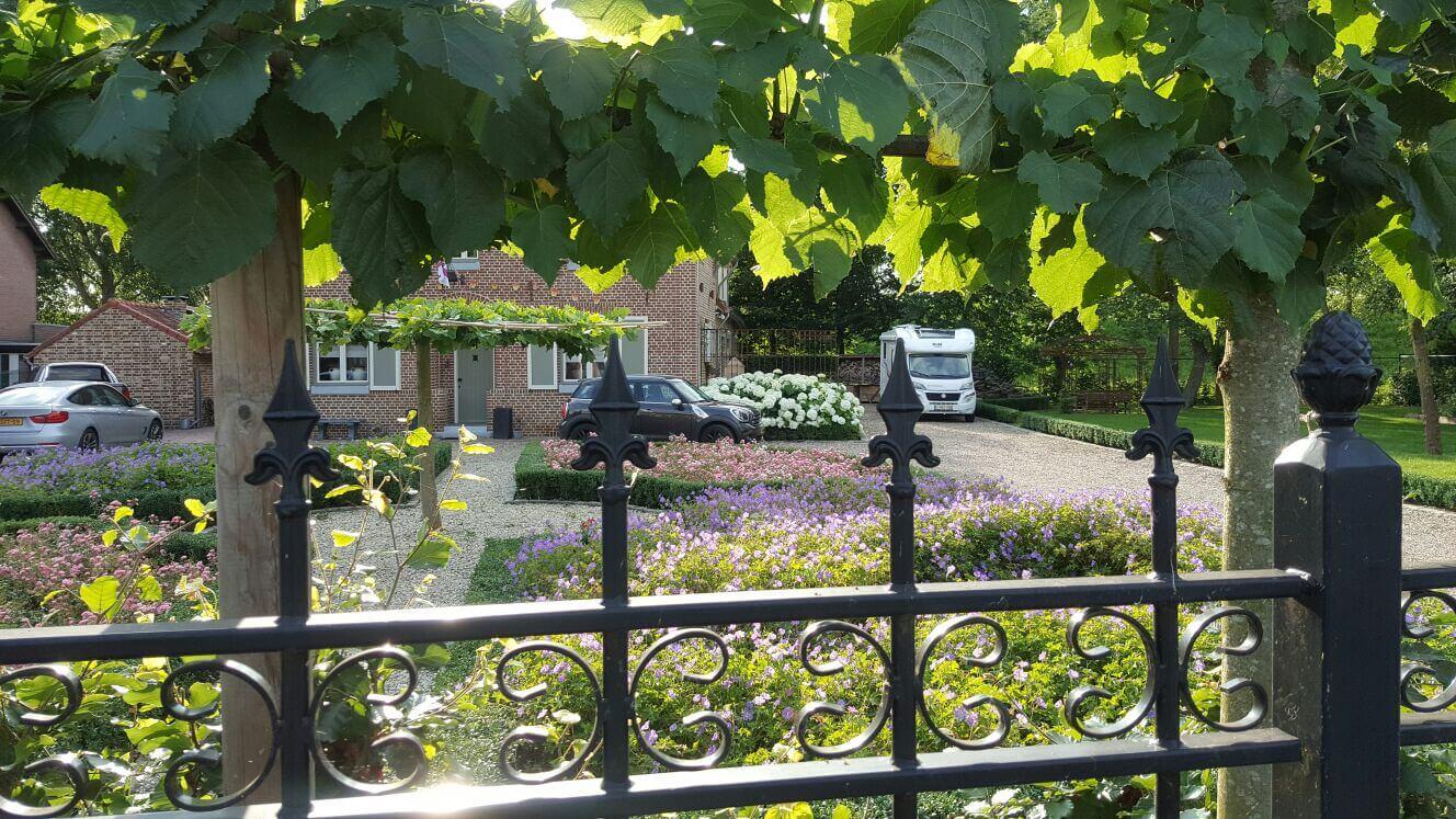 Buxus tuinonderhoud
