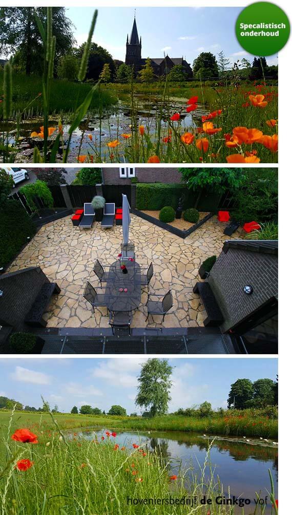 specialistisch onderhoud voor uw tuin