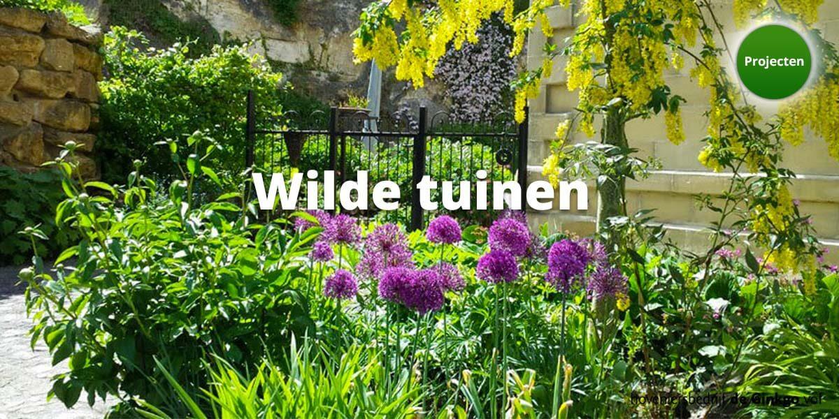 Projecten: aanleg en onderhoud van wilde tuinen